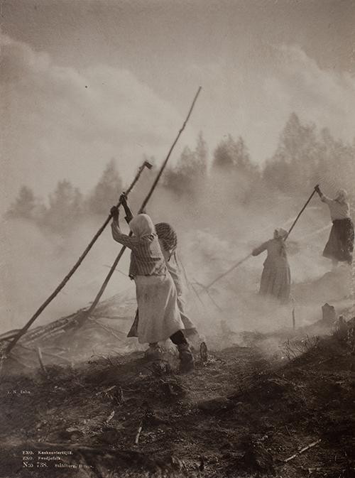 Svijordbruk i Finland 1892.